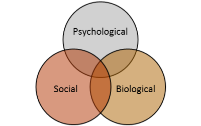 What is the Biopsychosocial Model?
